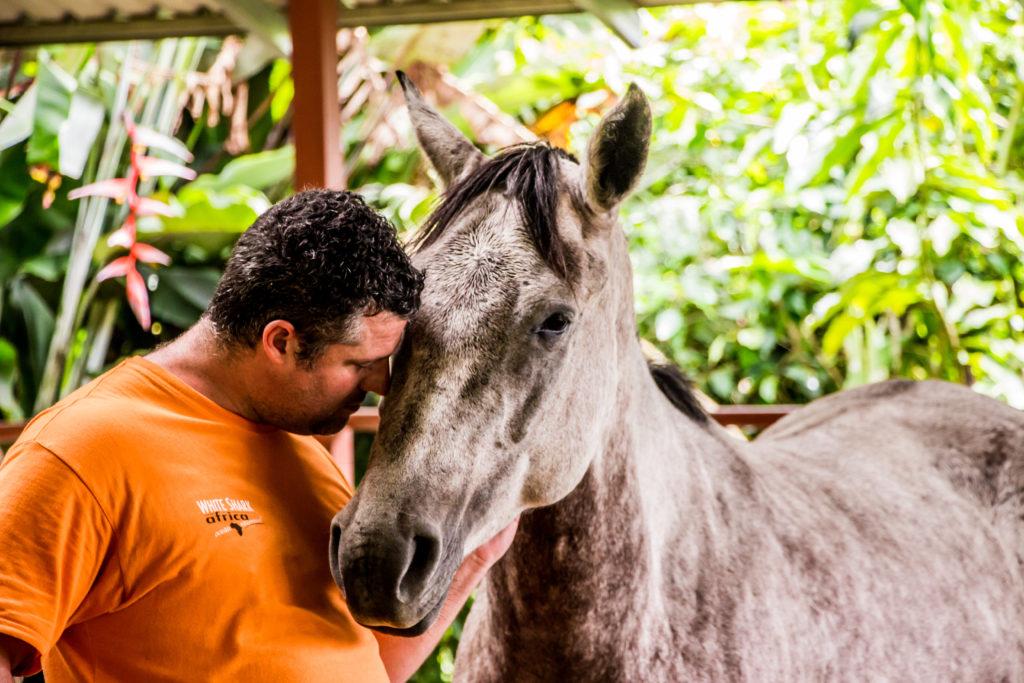 Les ticos au Costa Rica sont proches de leurs chevaux chevaux « Sans Attache », des chevaux et des humains libérés 2019 Photos Sans Attache for Press 19 Leila Pages 1024x683