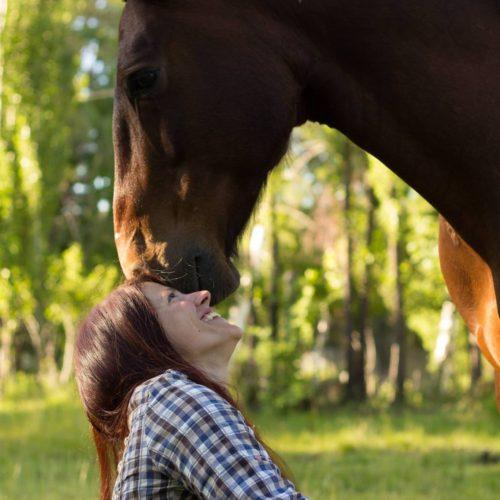 « Sans Attache », des chevaux et des humains libérés chevaux « Sans Attache », des chevaux et des humains libérés 2019 Photos Sans Attache for Press 25 Christopher Pitout 500x500
