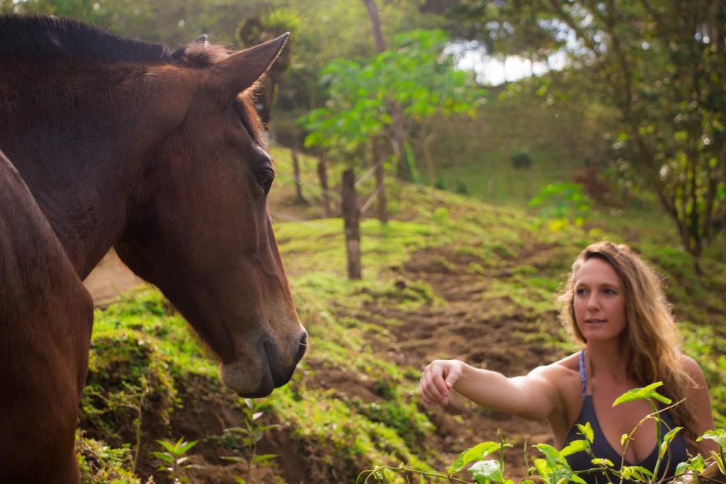 Mieux comprendre le cheval pour mieux se comprendre chevaux « Sans Attache », des chevaux et des humains libérés 2019 Photos Sans Attache for Press 5 Leila Pages 1024x683