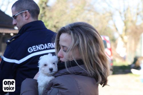 One Voice, plus qu'une voix pour les animaux one voice One Voice, plus qu'une voix pour les animaux One Voice Muriel Arnal et chien sauvetage 500x333