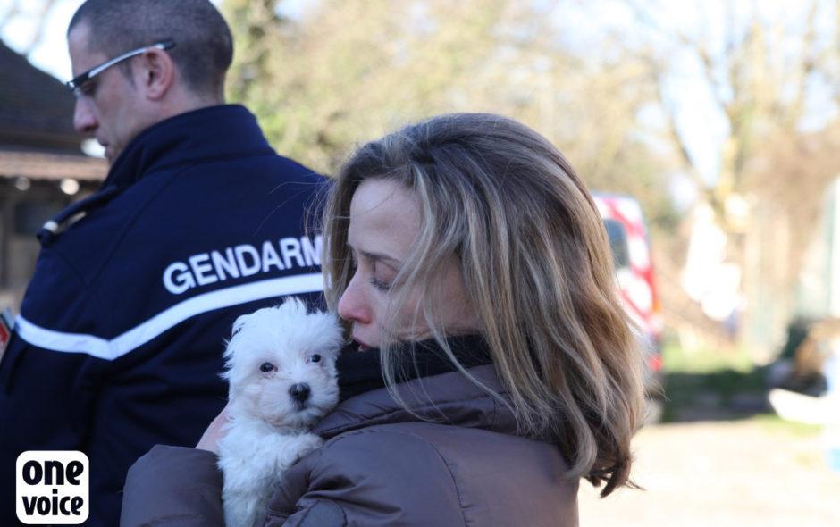 one voice One Voice, plus qu'une voix pour les animaux One Voice Muriel Arnal et chien sauvetage 940x590