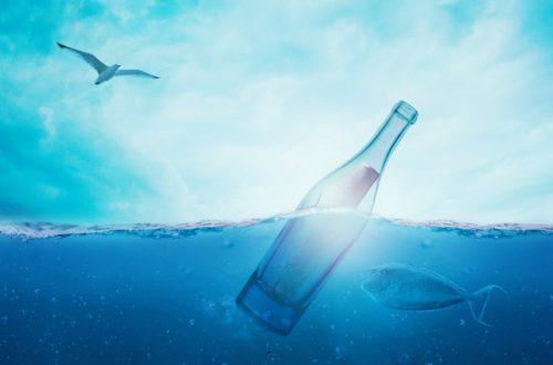 L'inimaginable réchauffement des océans sea 1377712 1920 500x330