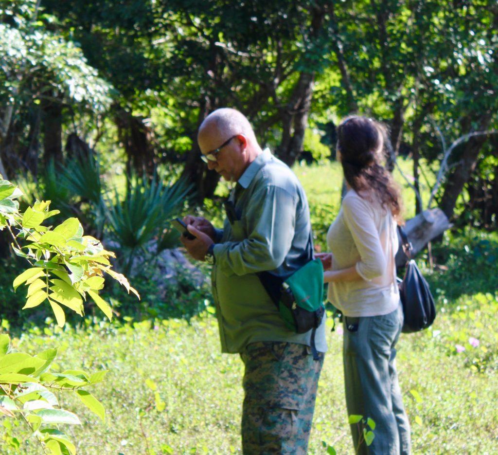 colibri Sur la piste du plus petit oiseau au monde IMG 1456 1024x935