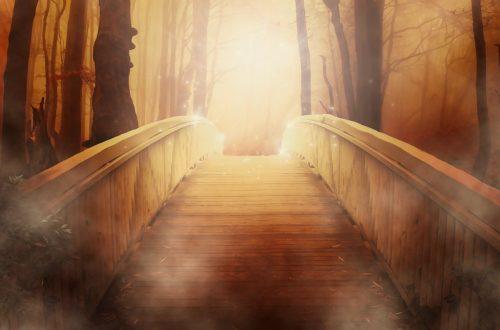 ecologie Faire le pont entre écologie et…spiritualité bridge 19513 1280 500x330