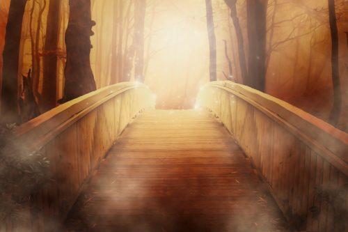 Faire le pont entre écologie et…spiritualité ecologie Faire le pont entre écologie et…spiritualité bridge 19513 1280 500x333