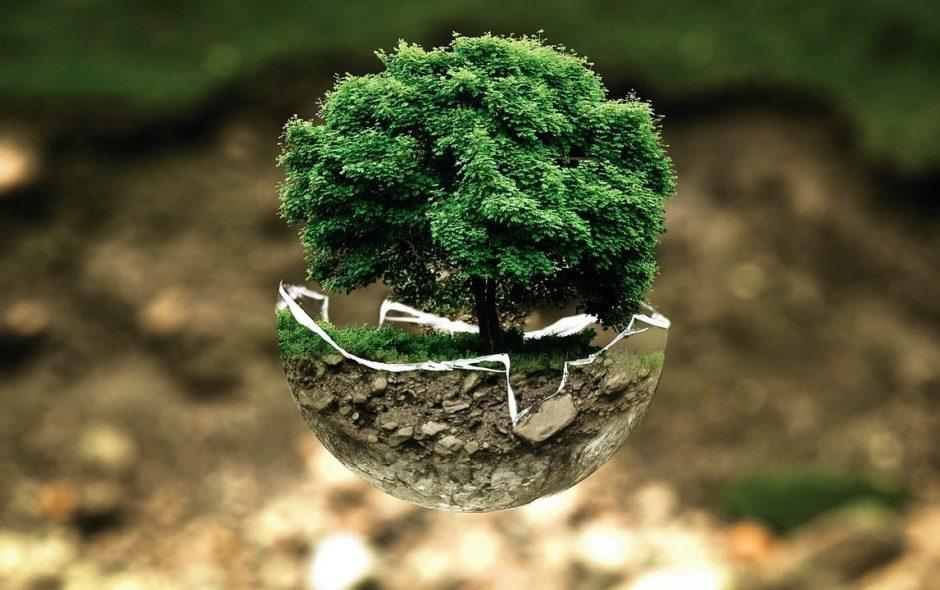 monde Le monde de demain? environmental protection 683437 1280 940x590