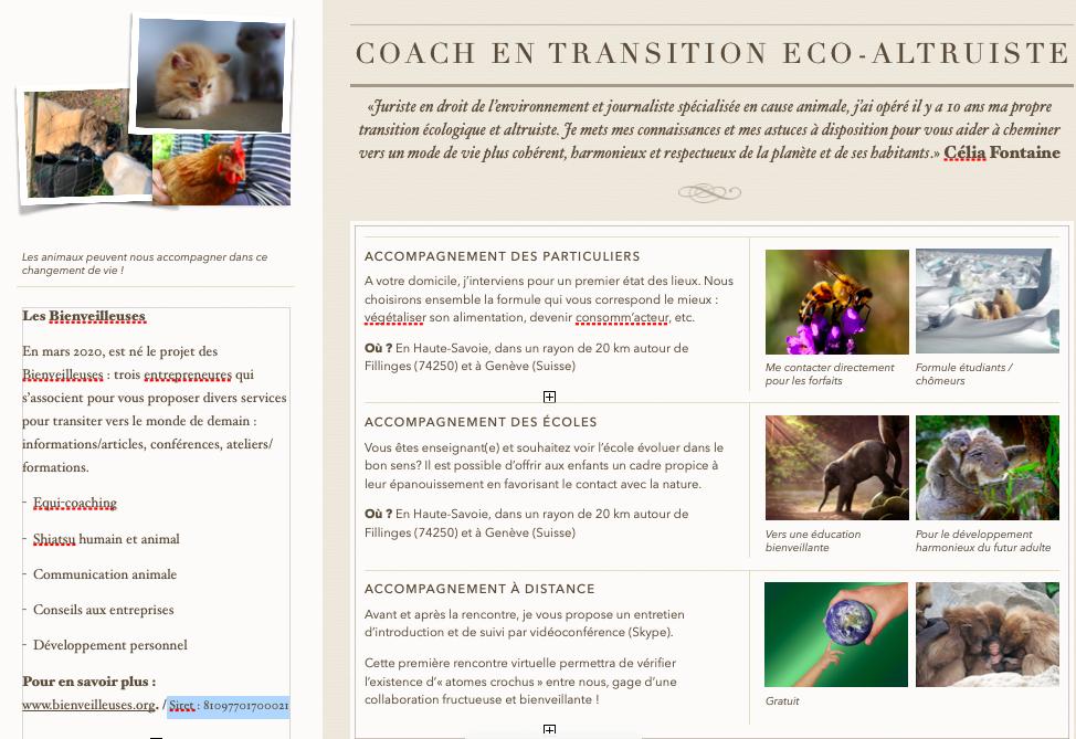 Vous accompagner dans votre transition éco-altruiste coach transition altruiste verso