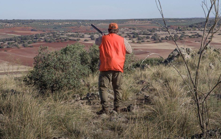 violence Chasse : des questions qui restent sans réponses hunting 4626664 1280 940x590